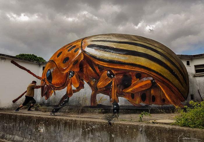 葡萄牙涂鸦艺术家的惊人3D绘画之作插图(11)