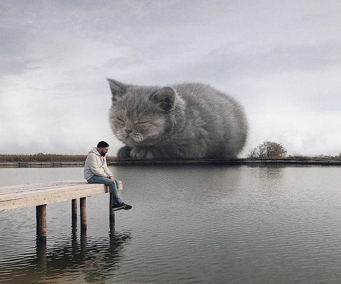 巨型猫咪的世界插图(20)