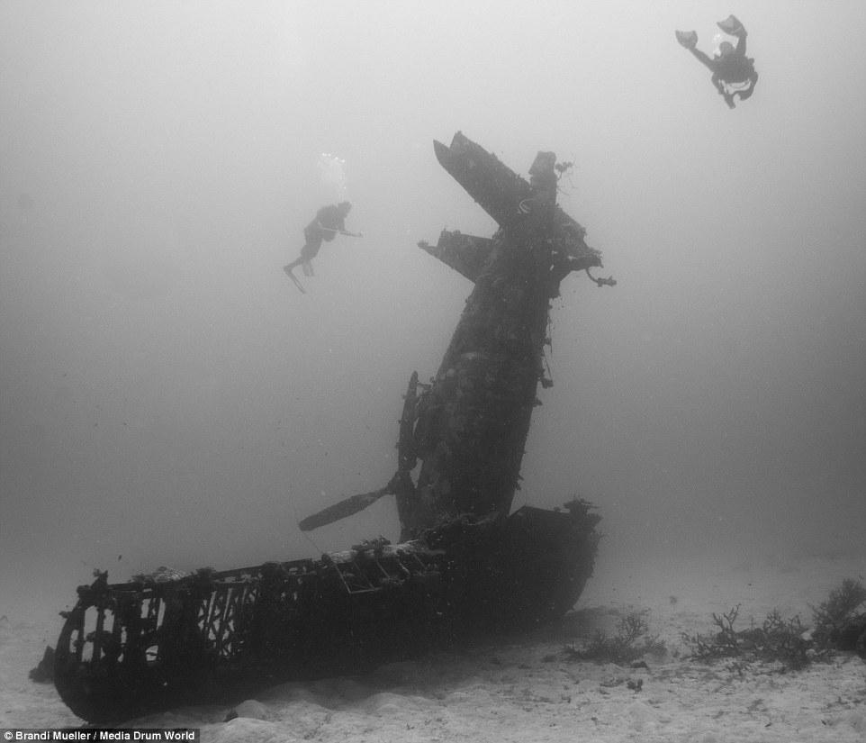 海底的二战飞机墓场插图