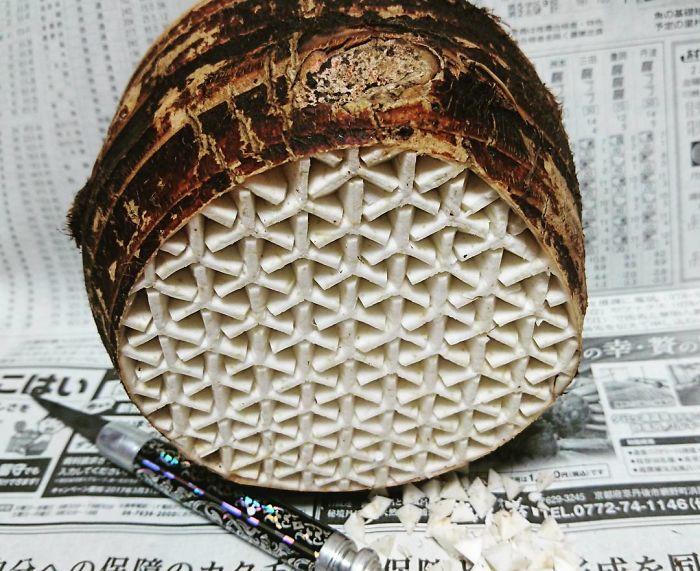 日本艺术家的食雕作品插图(8)