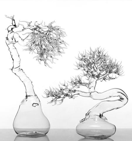 玻璃盆景插图5