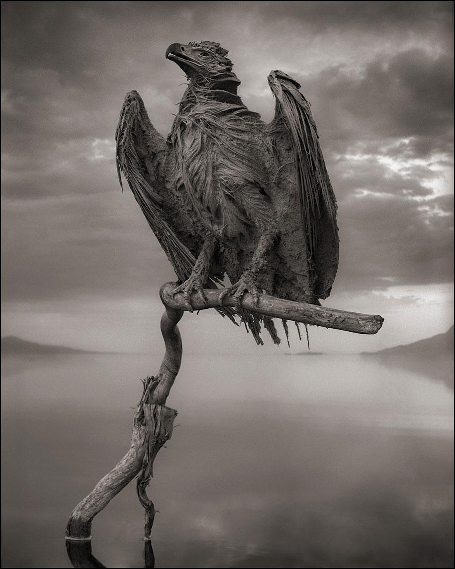 东非的死亡之河 – 动物被石化仿佛来自地狱的雕像插图2