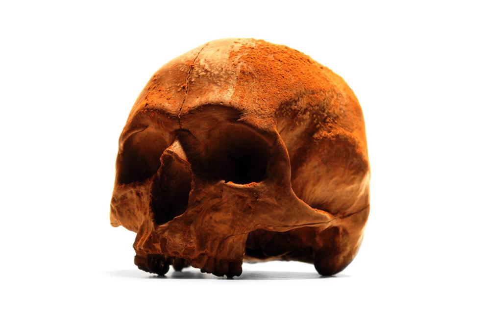 人类头骨巧克力插图