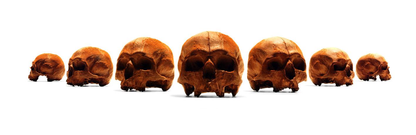 人类头骨巧克力插图3